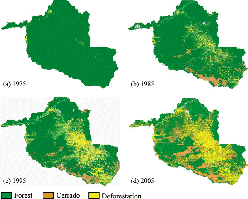 Evolution of deforestation in Rondônia