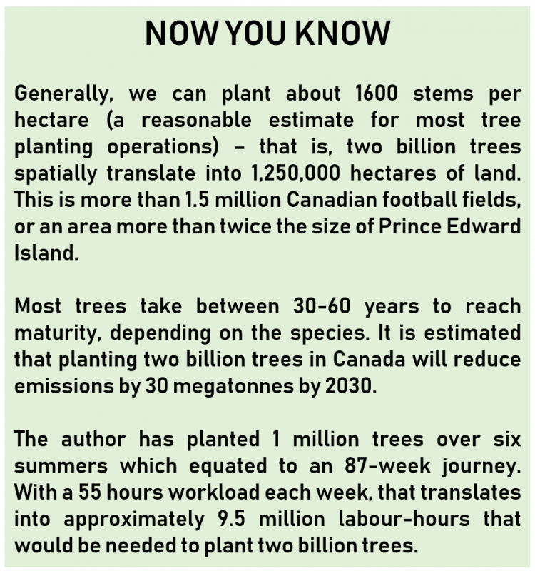 Plant Two Billions Trees